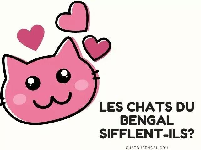 Les Chats Du Bengal Sifflent-Ils?