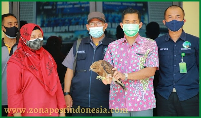 Ditpolairud Polda Jawa Timur Ringkus Dua Pelaku Penyelundupan Satwa Dilindungi