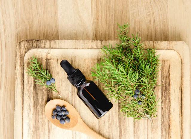 The essential oil of juniper