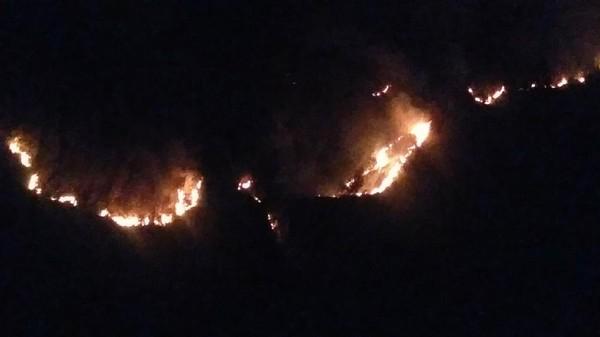 Kebakaran Terjadi di 2 Titik Taman Nasional Bromo Tengger Semeru