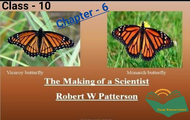 Chapter-6, The Making of a Scientist