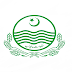 www.jobs.punjab.gov.pk - Local Government Punjab Jobs 2021 in Pakistan