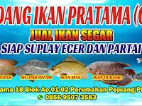 Download Contoh Banner Jual Ikan Segar.cdr