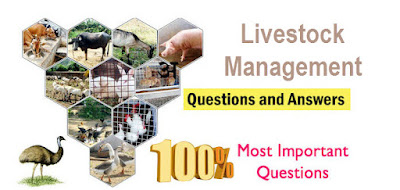 LIVESTOCK PRODUCTION AND MANAGEMENT MCQS