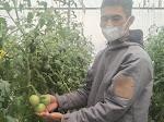 Digitalisasi Pertanian, Ini Cara BI Jabar Gandeng UMKM di Cianjur