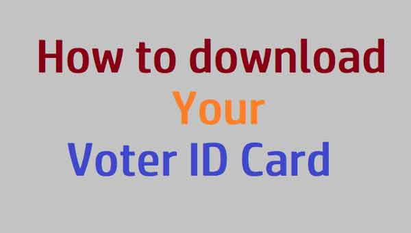 How to download your Voter ID Card online