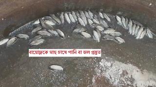 বায়োেফ্লকে মাছ চাষে পানি বা জল প্রস্তুত কিভাবে করবেন?  Biofloc Fish Framing (পর্ব ৯)