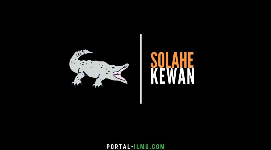 Solahe Kewan