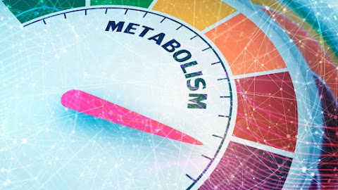 5 Ways To Increase Your Metabolism