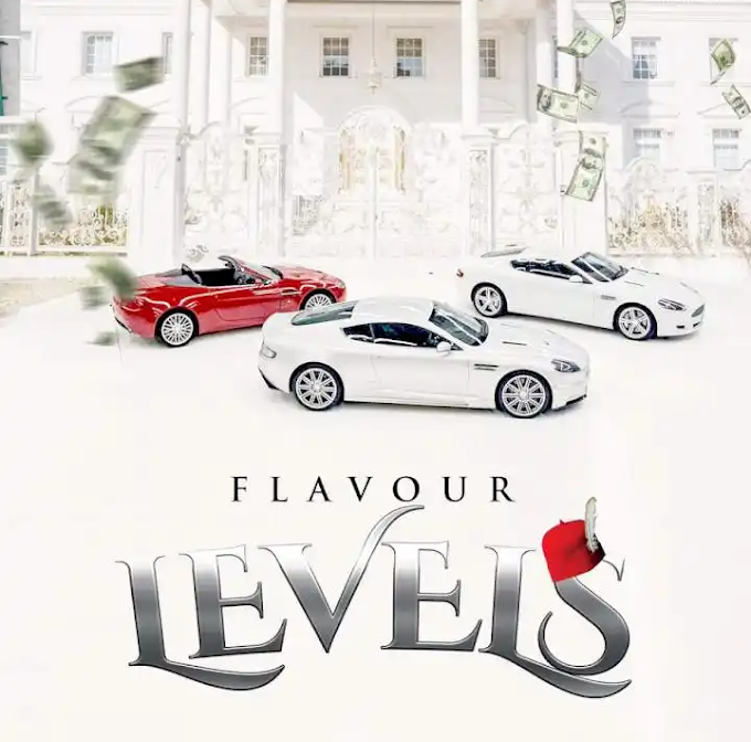 Download mp3: Flavour_ Levels