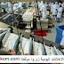 تشغيل 40 عامل وعاملة في معالجة الأسماك بمدينة  الداخلة