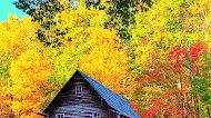 Grist Mill in Autumn, nature mobile wallpaper