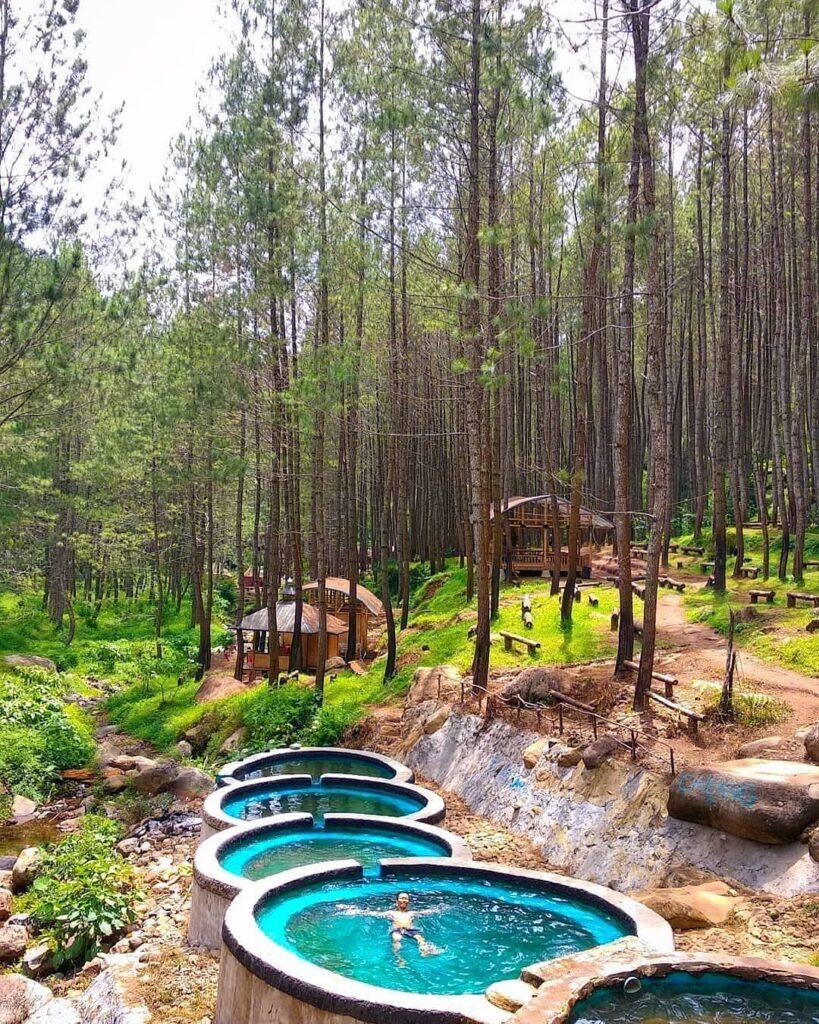 Wana Wisata Kampung Ciherang, Romansa di Hutan Pinus