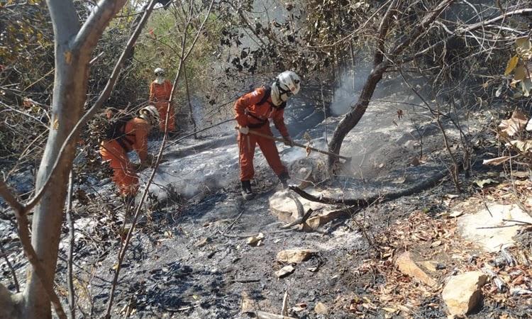 Ibicoara, Andaraí, e Livramento têm incêndios extintos; chamas continuam em outros 10 municípios