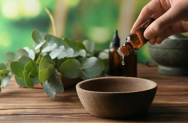 The essential oil of eucalyptus mint