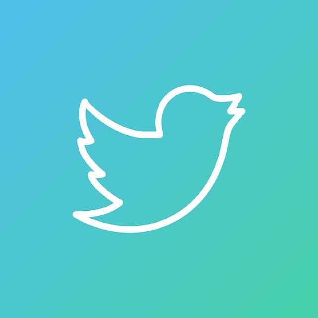 Build 1k Twitter Followers in 1 Day