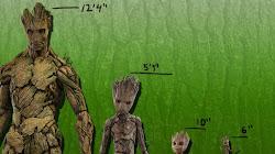 Khi nào Groot sẽ trở lại bình thường (phiên bản adult)?