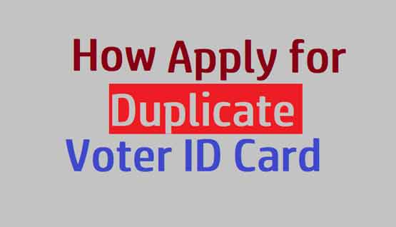How to Apply for a Duplicate Voter ID Card