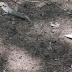 Urgente: corpo é confundindo com alienígena e choca moradores de Manaus