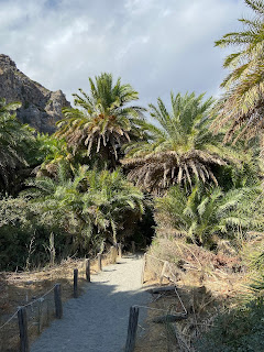 View of Preveli Palm Forest.