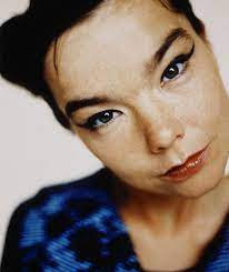 Bjork Net Worth, Income, Salary, Earnings, Biography, How much money make?