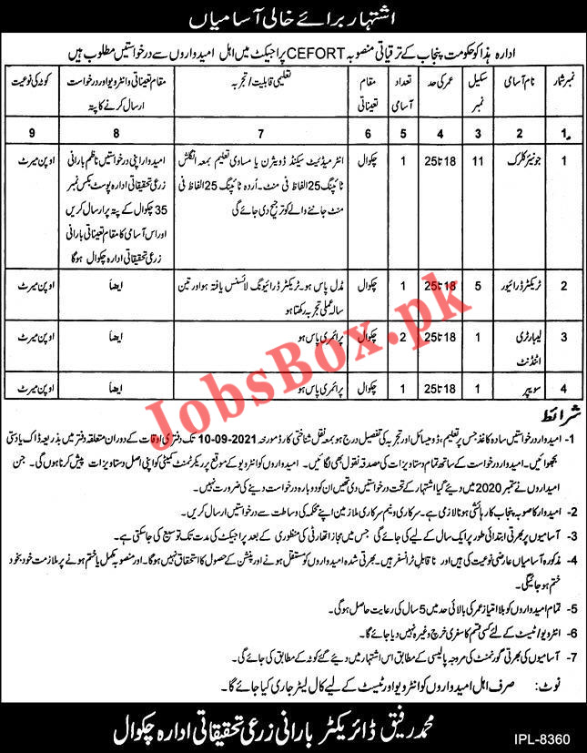 Barani Agricultural Research Institute Chakwal Jobs 2021,for the CEFORT Project