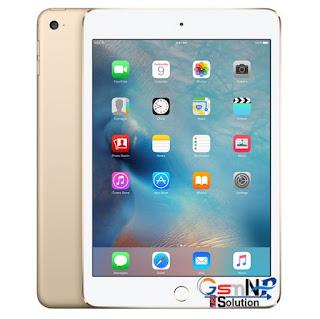 Apple iPad mini 4 iOS 14.7.1 Jailbreak & Untethered iCloud Bypass Free