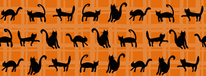 Black Cats Cover Photo
