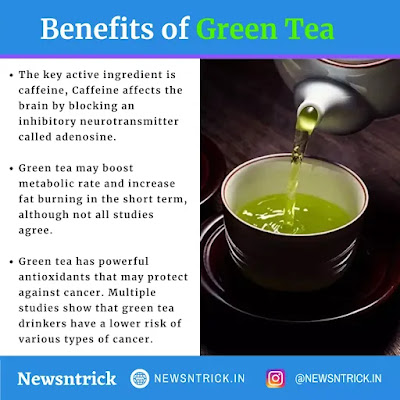 Facts and Benifit of Drinking Green Tea | Health Newsntrick