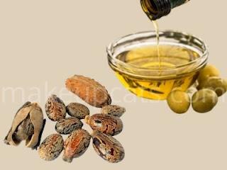 castor seed & oil