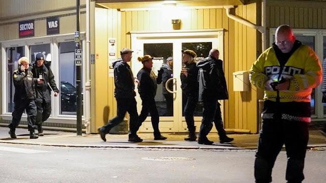 Πέντε άνθρωποι νεκροί στη Νορβηγία από επίθεση με βέλη