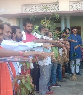 चंदौली में इमलिया गांव के लोगों ने ली वृक्षारोपण की शपथ  | #NayaSaberaNetwork