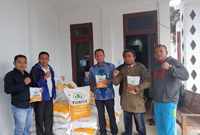 Bantuan Bibit Jagung Untuk 5000 Ha, BNNK Targetkan 36000 Ton, Saat Panen Nanti