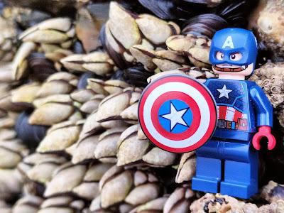 Lego capitán América percebes