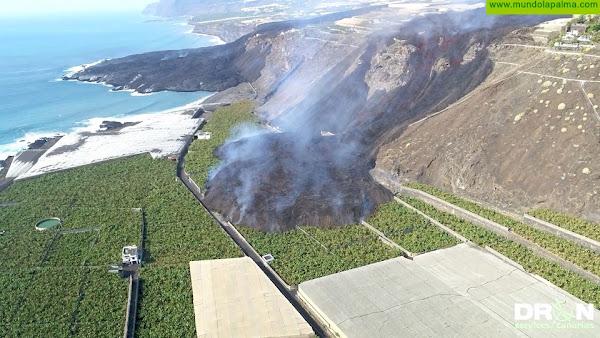El Cabildo de La Palma recibe el compromiso del ministro de Agricultura de cubrir los daños ocasionados por la erupción al sector primario