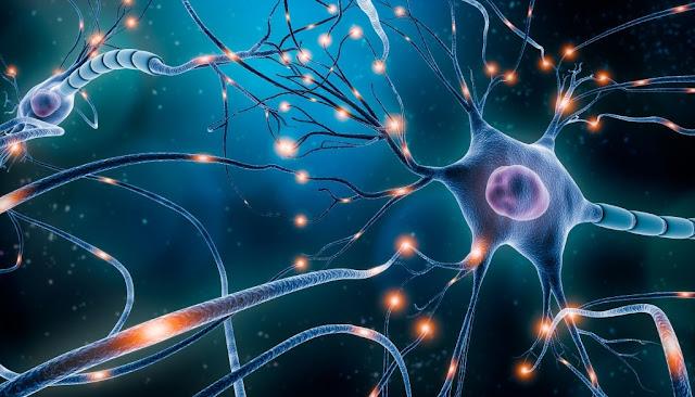 Mild Cognitive Impairment Is Prevalent In Hypertensive Patients