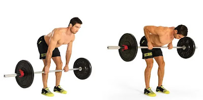 Bent-over row, full body workout muscle and strength