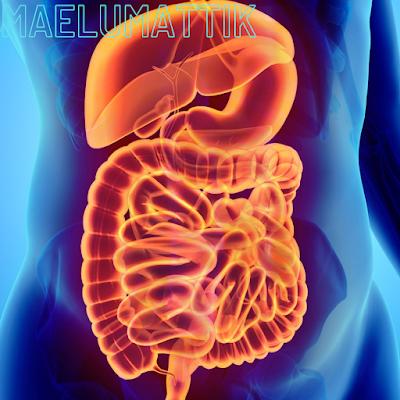 أمراض-الجهاز-الهضمي