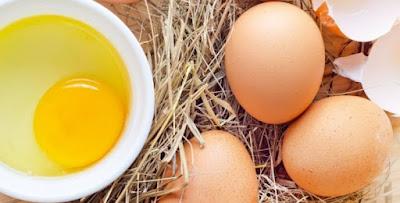 Eggs increase Perception