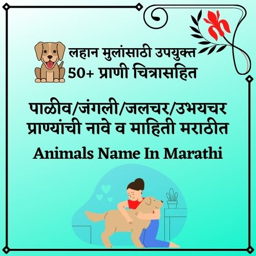 Animals Name In Marathi