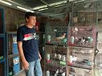 Jelang Pensiun, Anggota Polres Banjarnegara Tekuni Bisnis Merpati Hias
