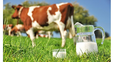 composition of pure milk