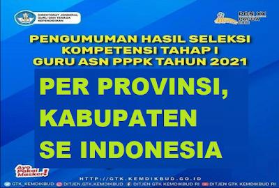 TERBARU CEK! Download Hasil Pengumuman Seleksi PPPK Guru Tahap 1 Per Kabupaten dan Provinsi Tahun 2021