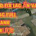 NEW MOD ẨN MENU TIẾNG VIỆT FREE FIRE OB30 FIX LAG LEO RANK CHẠY NHANH TÀN HÌNH FULL