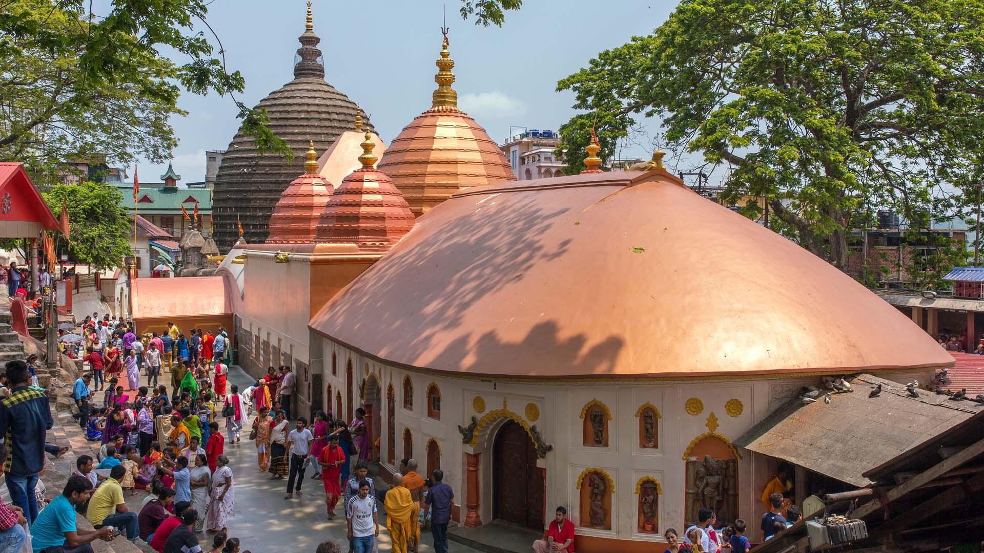 Best Astrologer in Kamakhya