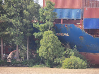 Log-In Amazonia