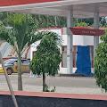 Kelangkaan BBM di Sejumlah Daerah, DPR Minta Pemerintah Bertindak Cepat