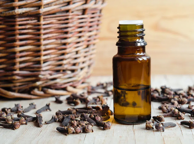 The essential oil of clove