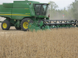 A green combine harvesting a field of soybeans.