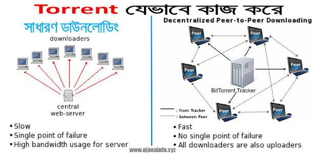 what-is-torrent-and-how-does-it-work-in-bangla